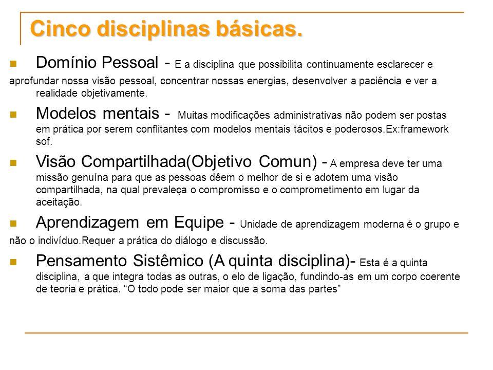 Cinco disciplinas básicas. Domínio Pessoal - E a disciplina que possibilita continuamente esclarecer e aprofundar nossa visão pessoal, concentrar noss