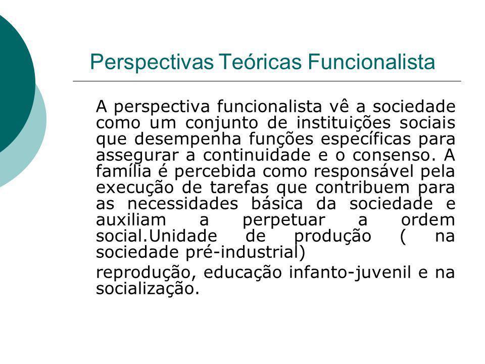 Perspectivas Teóricas Funcionalista A perspectiva funcionalista vê a sociedade como um conjunto de instituições sociais que desempenha funções específ