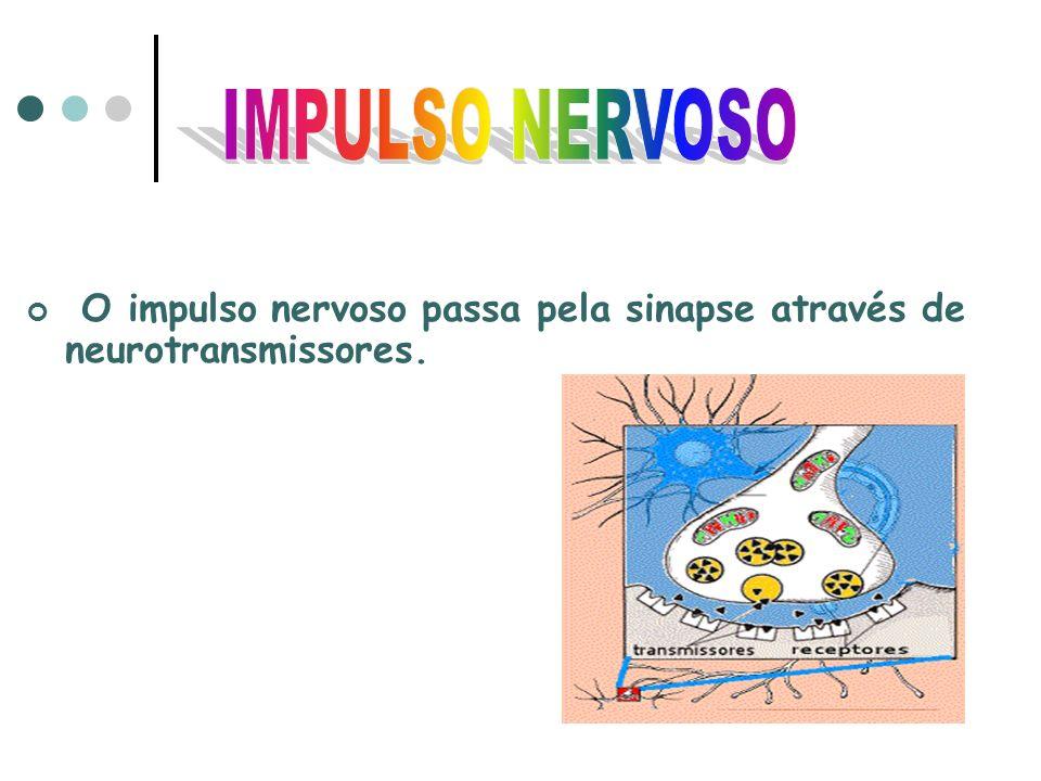 O impulso nervoso passa pela sinapse através de neurotransmissores.