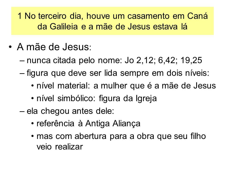 A mãe de Jesus : –nunca citada pelo nome: Jo 2,12; 6,42; 19,25 –figura que deve ser lida sempre em dois níveis: nível material: a mulher que é a mãe d