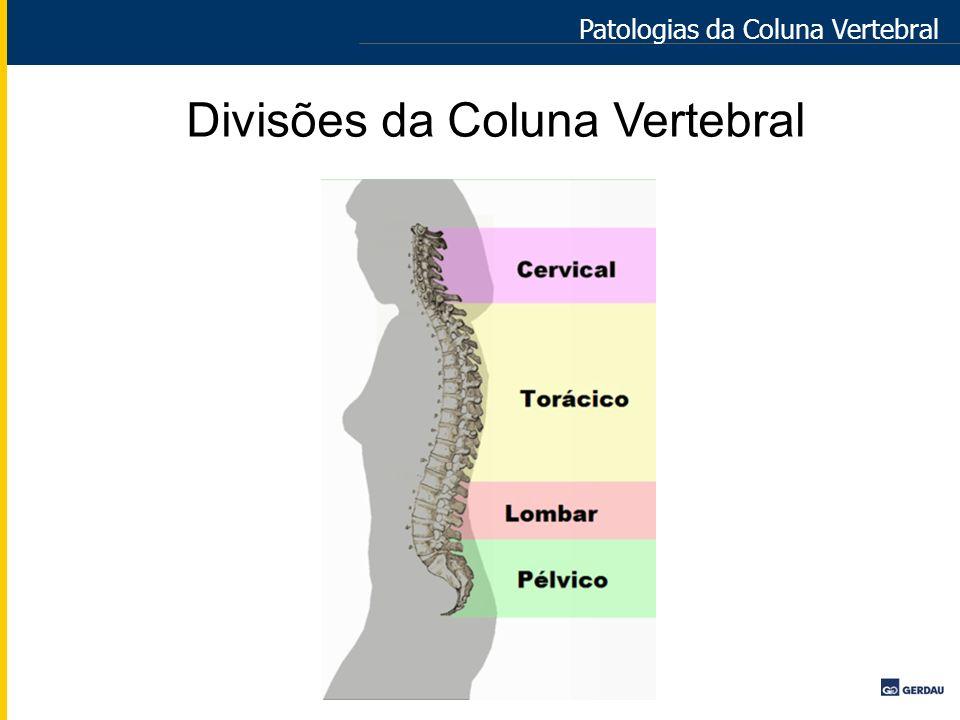 Divisões da Coluna Vertebral Patologias da Coluna Vertebral