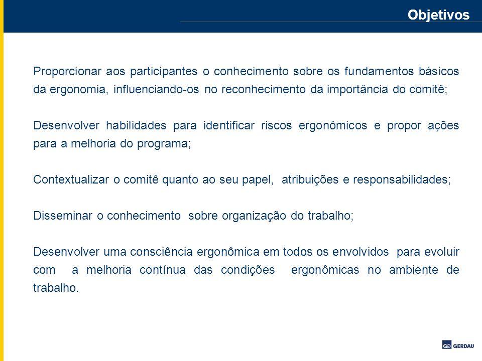 Panorama Ergonômico Censo Levantamento Questões Ergonômicas PANORÂMA ERGONOMICO