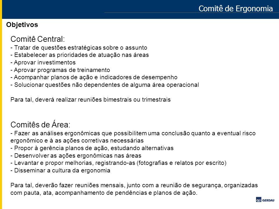 Comitê de Ergonomia Objetivos Comitê Central: - Tratar de questões estratégicas sobre o assunto - Estabelecer as prioridades de atuação nas áreas - Ap