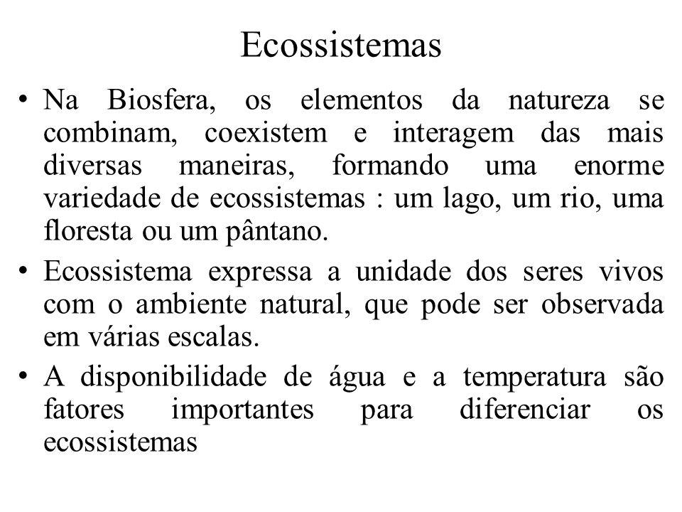 Sucessão ecológica É o processo de formação de um ecossistema numa área anteriormente desprovida de vida.