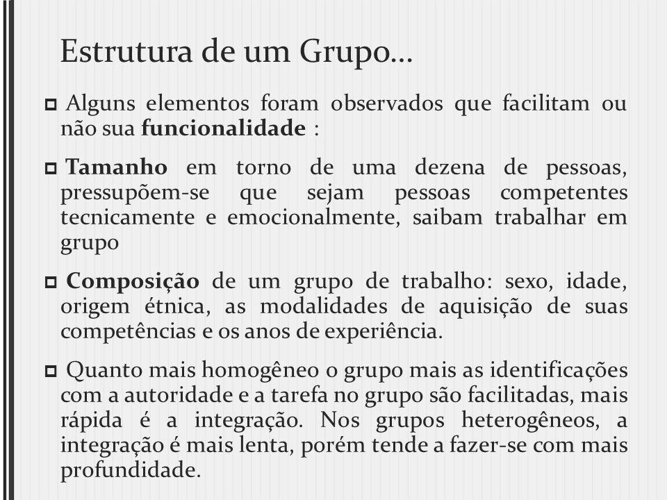 Estrutura de um Grupo… Alguns elementos foram observados que facilitam ou não sua funcionalidade : Tamanho em torno de uma dezena de pessoas, pressupõ