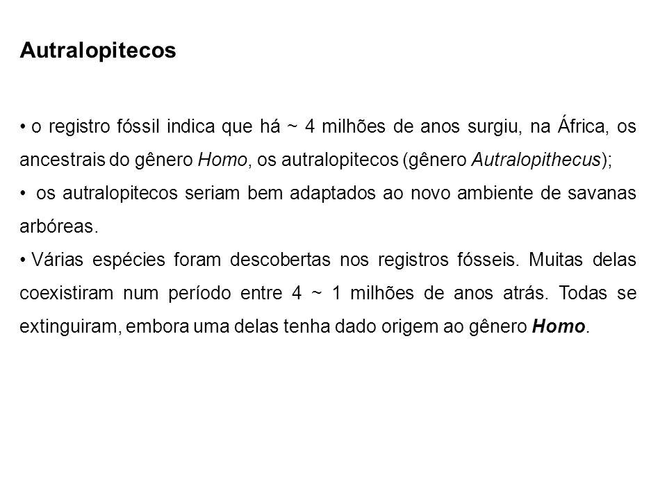 Autralopitecos o registro fóssil indica que há ~ 4 milhões de anos surgiu, na África, os ancestrais do gênero Homo, os autralopitecos (gênero Autralop
