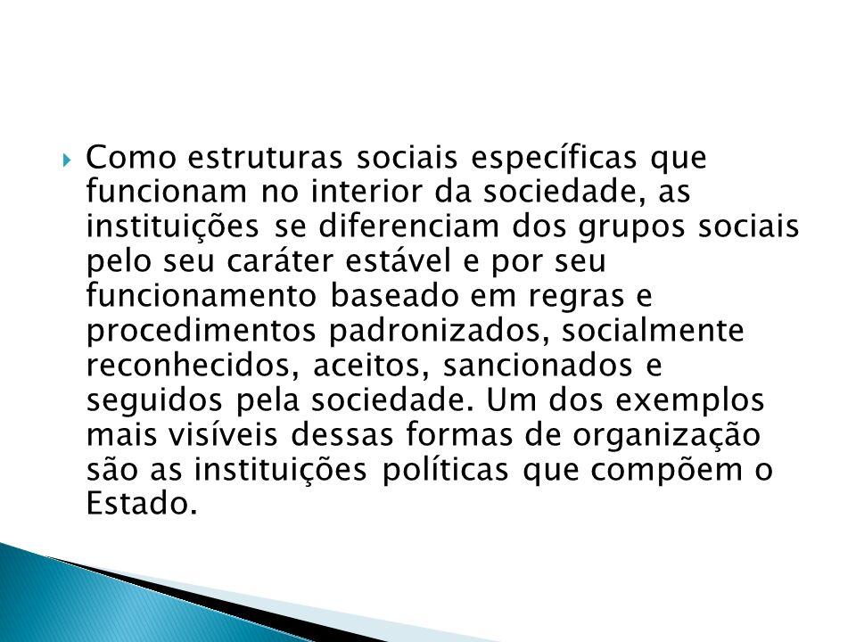 Como estruturas sociais específicas que funcionam no interior da sociedade, as instituições se diferenciam dos grupos sociais pelo seu caráter estável