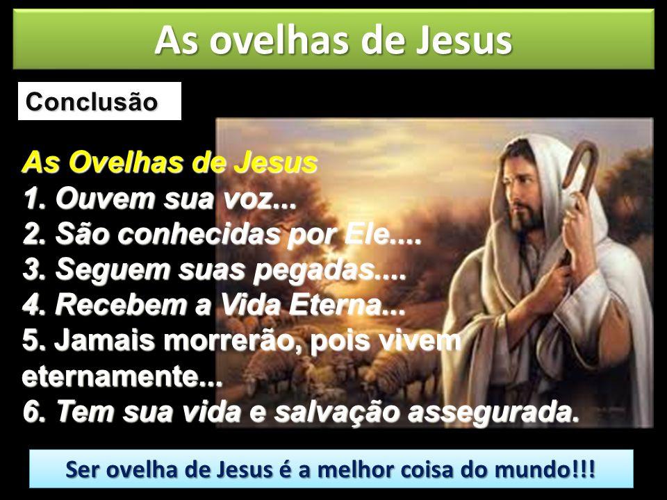 Conclusão Ser ovelha de Jesus é a melhor coisa do mundo!!! Ser ovelha de Jesus é a melhor coisa do mundo!!! As ovelhas de Jesus As Ovelhas de Jesus 1.