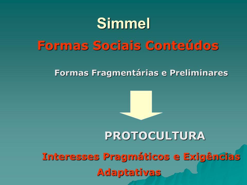 Simmel Formas Sociais Conteúdos Formas Fragmentárias e Preliminares PROTOCULTURA Interesses Pragmáticos e Exigências Adaptativas