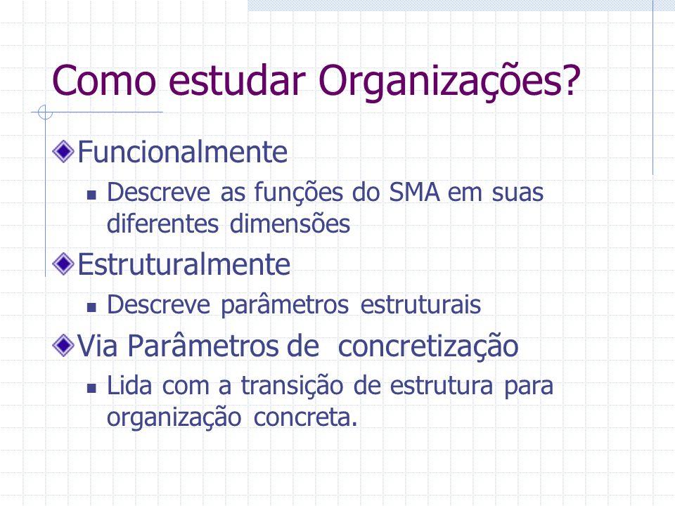 Como estudar Organizações? Funcionalmente Descreve as funções do SMA em suas diferentes dimensões Estruturalmente Descreve parâmetros estruturais Via