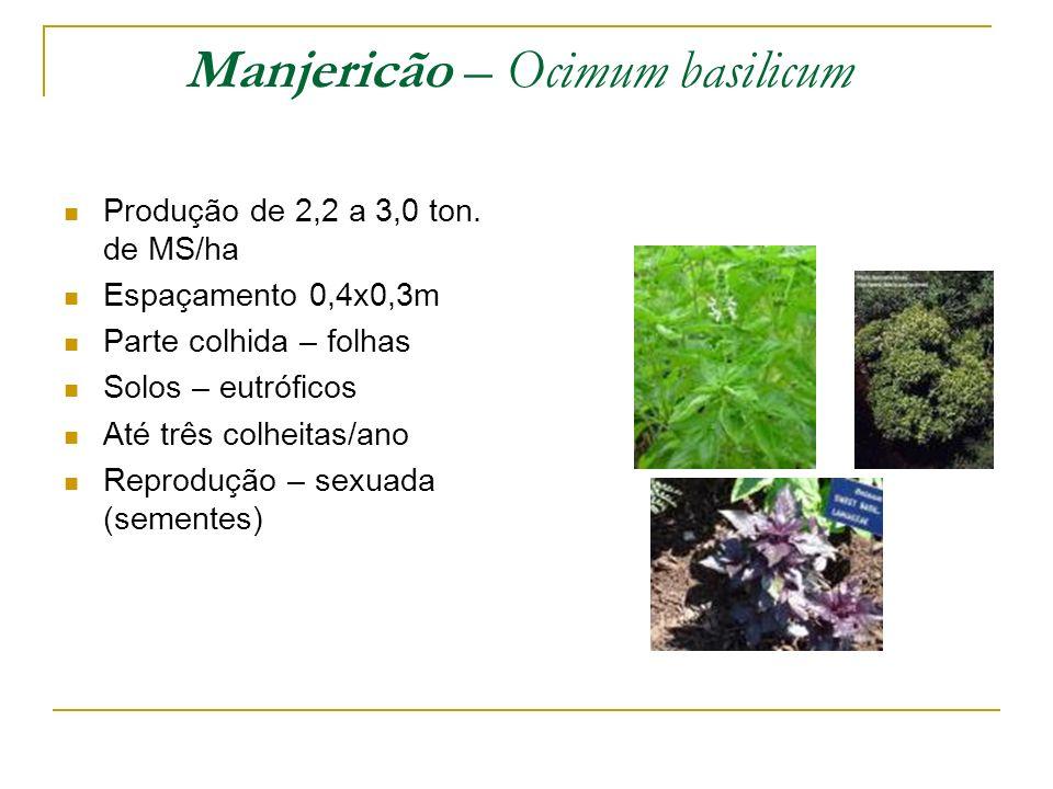 Produção de 2,2 a 3,0 ton. de MS/ha Espaçamento 0,4x0,3m Parte colhida – folhas Solos – eutróficos Até três colheitas/ano Reprodução – sexuada (sement