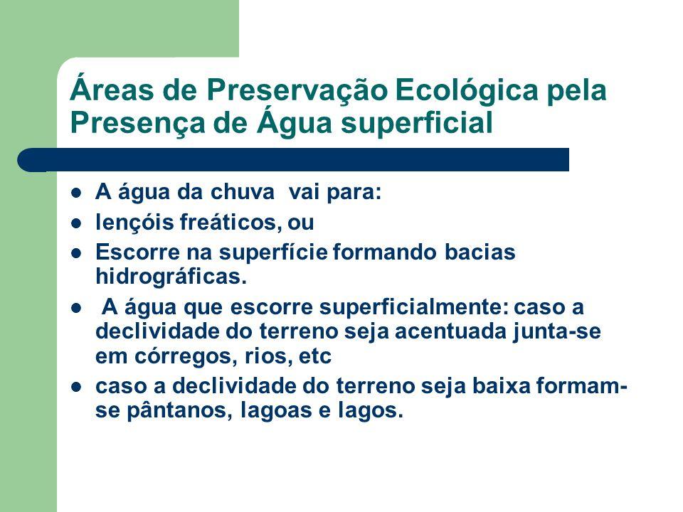 Áreas de Preservação Ecológica pela Presença de Água superficial A água da chuva vai para: lençóis freáticos, ou Escorre na superfície formando bacias hidrográficas.