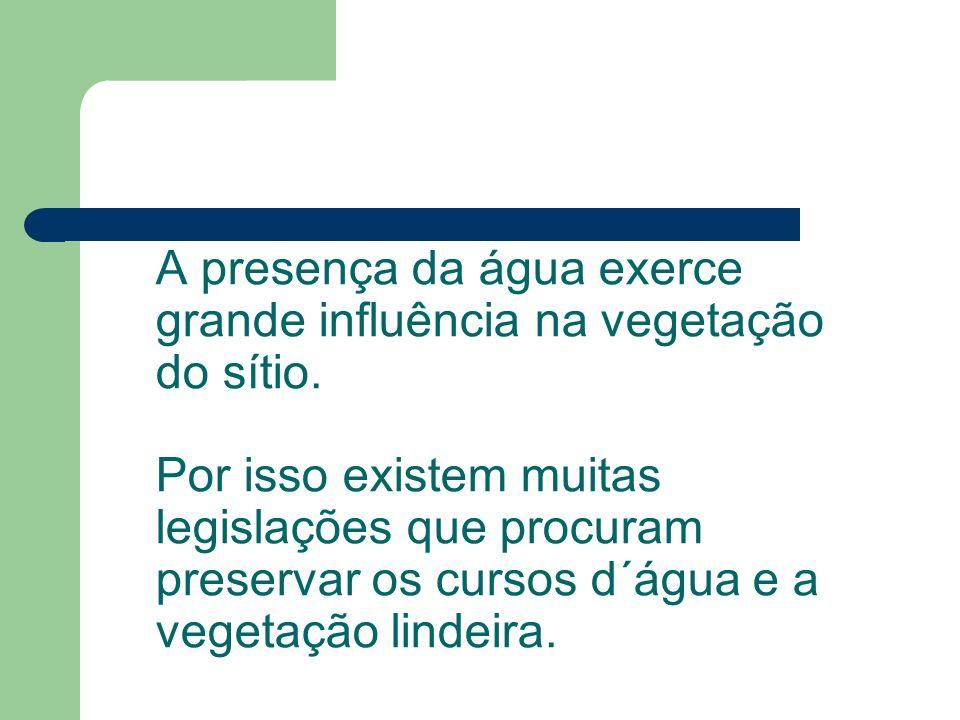 Erosão Causada Por Velocidade Das Águas Pluviais (Fonte: PEMAS Santo Antônio Do Descoberto.