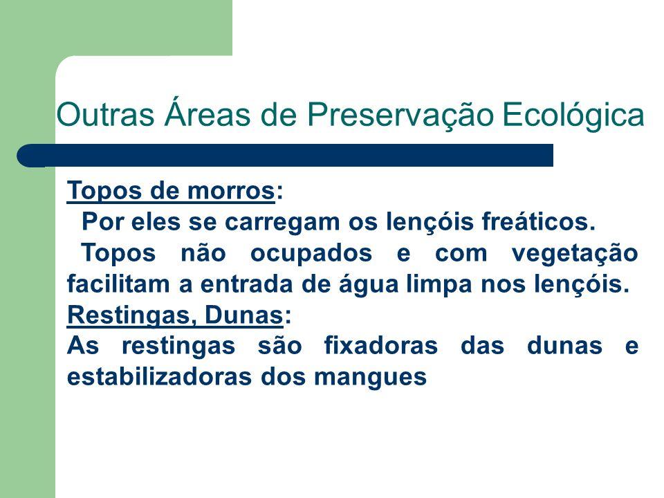 Outras Áreas de Preservação Ecológica Topos de morros: Por eles se carregam os lençóis freáticos.