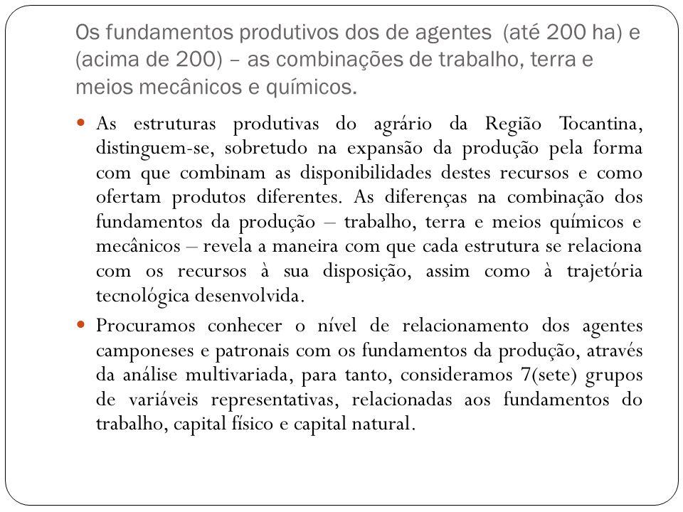 Os fundamentos produtivos dos de agentes (até 200 ha) e (acima de 200) – as combinações de trabalho, terra e meios mecânicos e químicos. As estruturas
