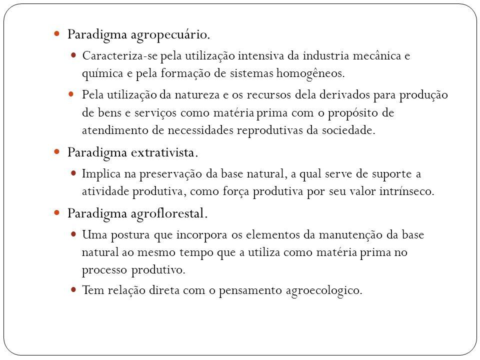 Paradigma agropecuário. Caracteriza-se pela utilização intensiva da industria mecânica e química e pela formação de sistemas homogêneos. Pela utilizaç