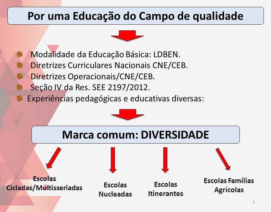 Modalidade da Educação Básica: LDBEN. Diretrizes Curriculares Nacionais CNE/CEB. Diretrizes Operacionais/CNE/CEB. Seção IV da Res. SEE 2197/2012. Expe