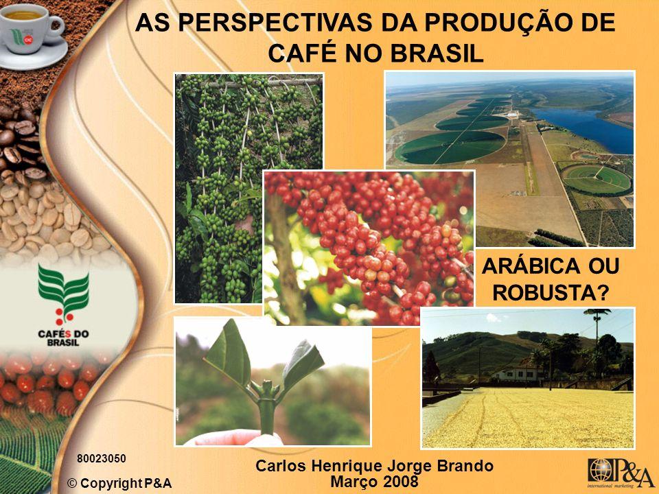 AS PERSPECTIVAS DA PRODUÇÃO DE CAFÉ NO BRASIL © Copyright P&A Carlos Henrique Jorge Brando Março 2008 80023050 ARÁBICA OU ROBUSTA?