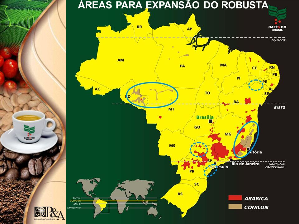 ÁREAS PARA EXPANSÃO DO ROBUSTA