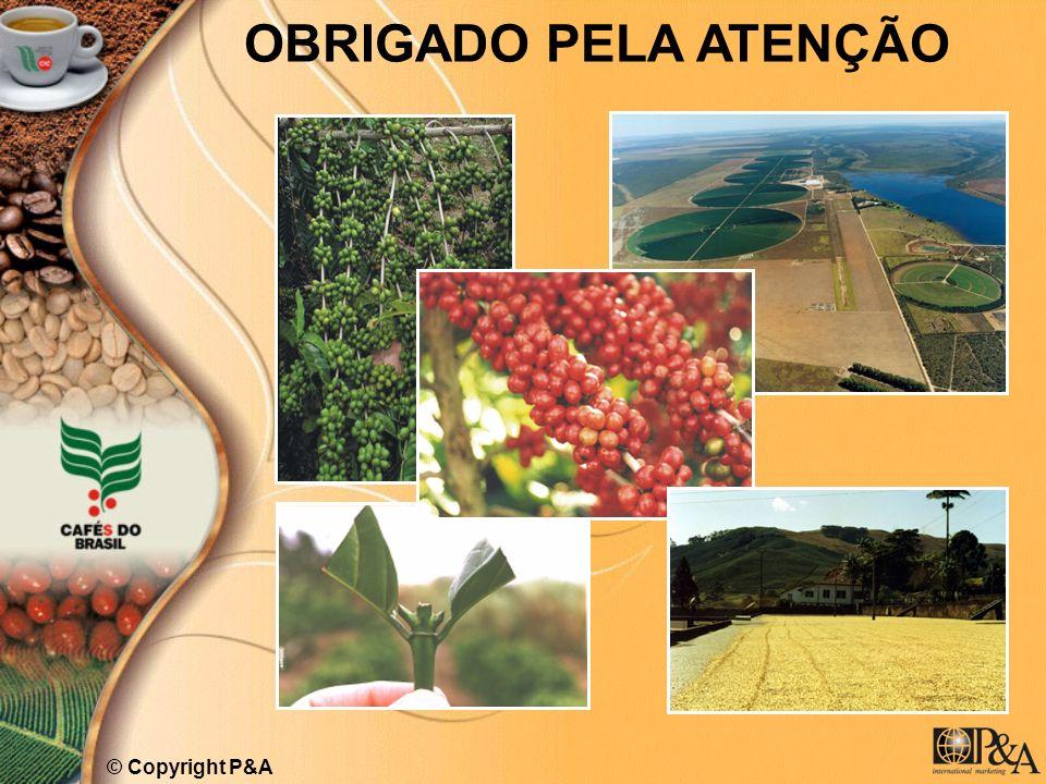 OBRIGADO PELA ATENÇÃO © Copyright P&A