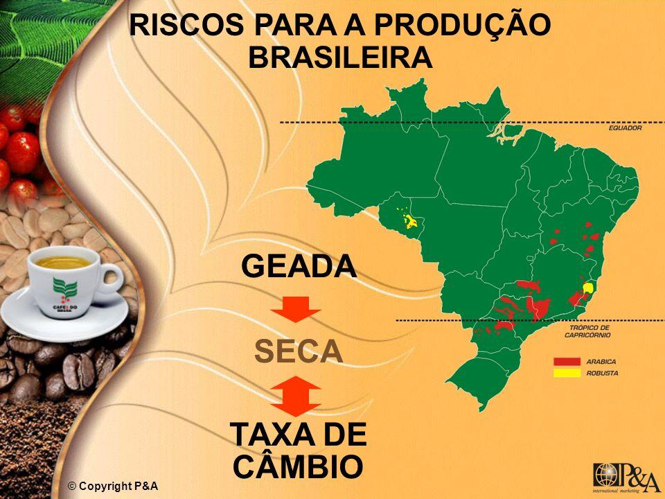 RISCOS PARA A PRODUÇÃO BRASILEIRA GEADA SECA TAXA DE CÂMBIO © Copyright P&A