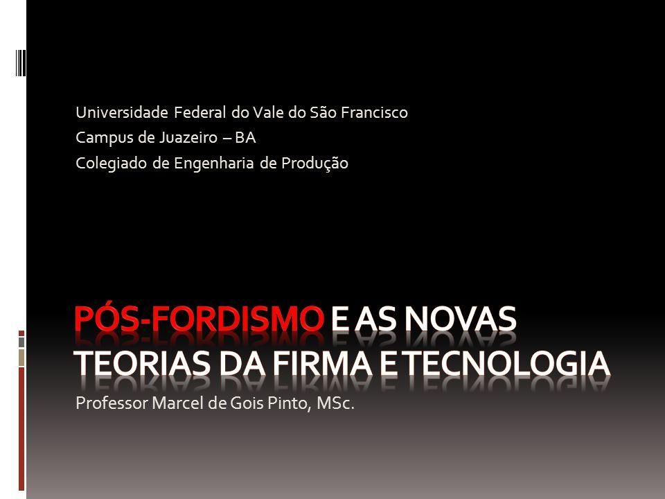 Professor Marcel de Gois Pinto, MSc. Universidade Federal do Vale do São Francisco Campus de Juazeiro – BA Colegiado de Engenharia de Produção