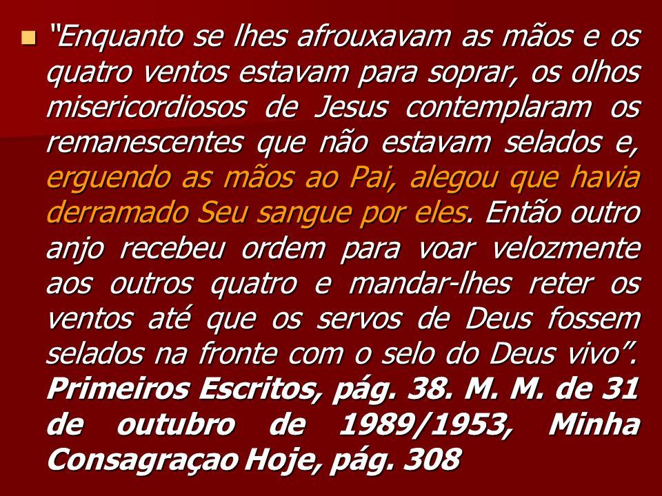 Enquanto se lhes afrouxavam as mãos e os quatro ventos estavam para soprar, os olhos misericordiosos de Jesus contemplaram os remanescentes que não es