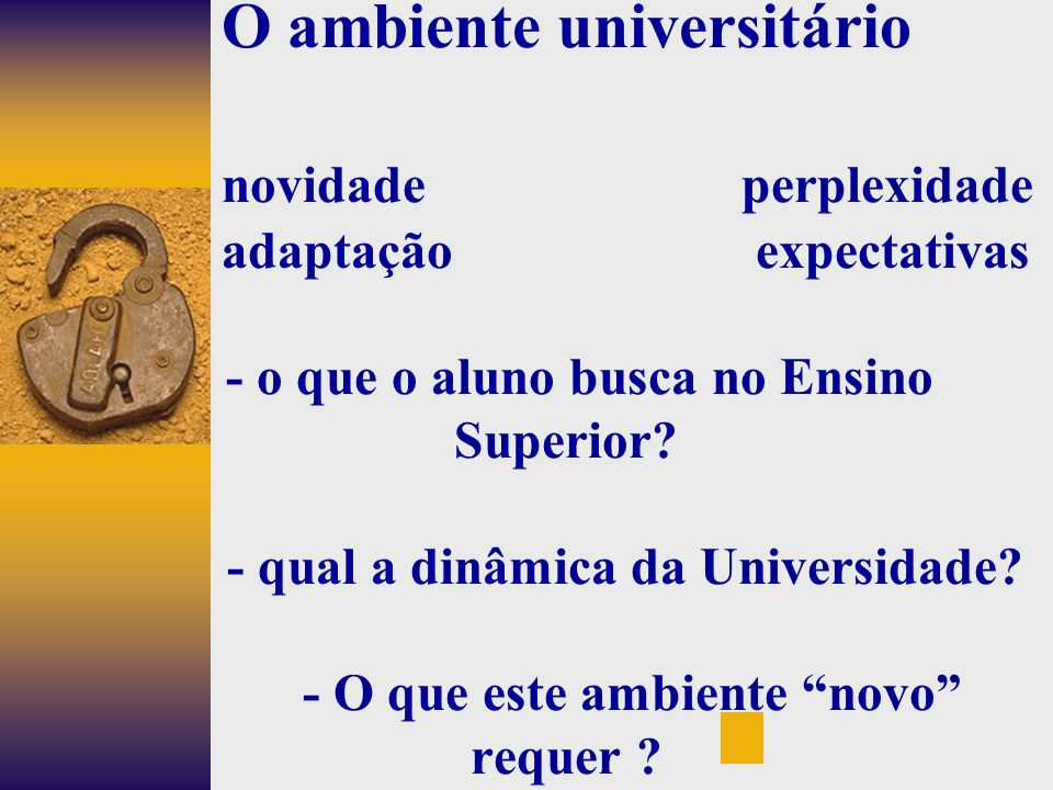 O ambiente universitário novidade perplexidade adaptação expectativas - o que o aluno busca no Ensino Superior.
