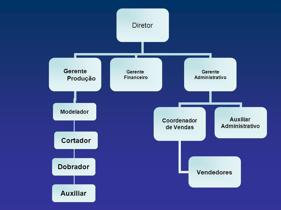Diretor Gerente Produção Modelador Gerente Financeiro Gerente Administrativo Coordenador de Vendas Vendedores Auxiliar Administrativo Cortador Dobrado