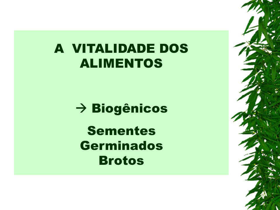 A VITALIDADE DOS ALIMENTOS Biogênicos Sementes Germinados Brotos