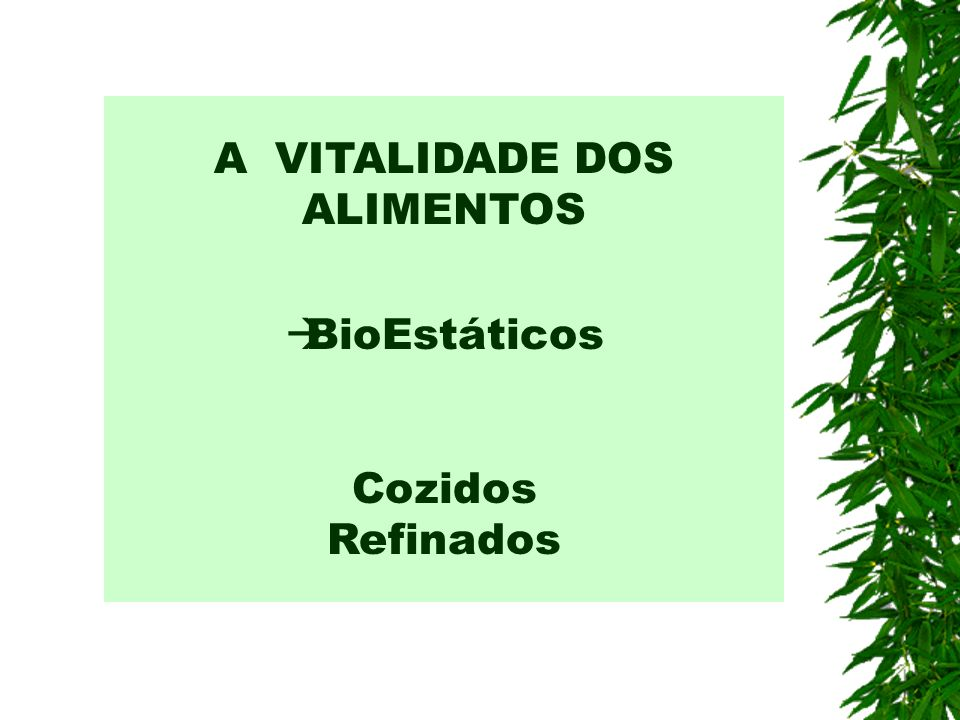 A VITALIDADE DOS ALIMENTOS BioEstáticos Cozidos Refinados