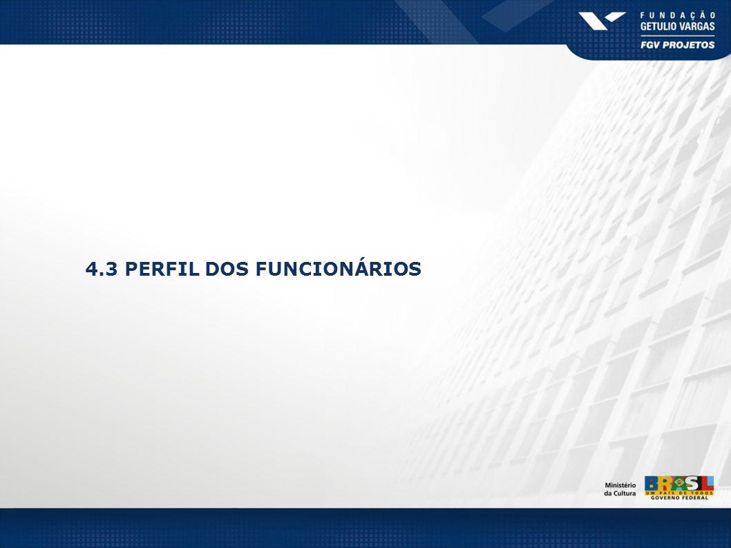 4.3 PERFIL DOS FUNCIONÁRIOS
