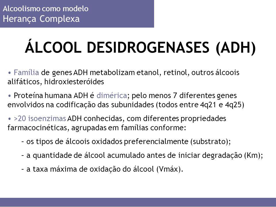 ÁLCOOL DESIDROGENASES (ADH) Família de genes ADH metabolizam etanol, retinol, outros álcoois alifáticos, hidroxiesteróides Proteína humana ADH é dimérica; pelo menos 7 diferentes genes envolvidos na codificação das subunidades (todos entre 4q21 e 4q25) >20 isoenzimas ADH conhecidas, com diferentes propriedades farmacocinéticas, agrupadas em famílias conforme: – os tipos de álcoois oxidados preferencialmente (substrato); – a quantidade de álcool acumulado antes de iniciar degradação (Km); – a taxa máxima de oxidação do álcool (Vmáx).
