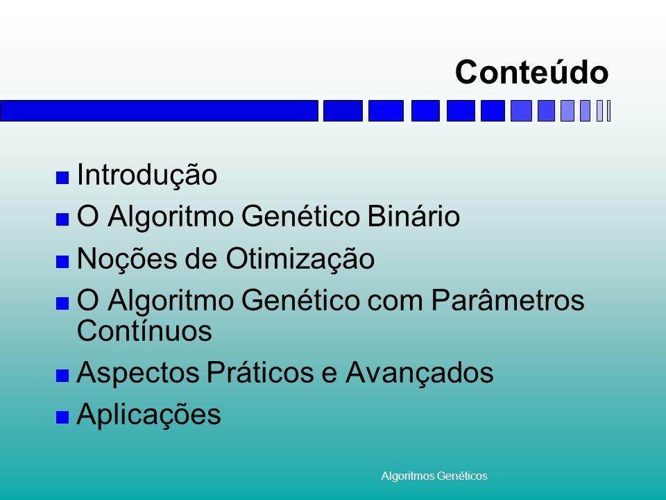 Algoritmos Genéticos Conteúdo Introdução O Algoritmo Genético Binário Noções de Otimização O Algoritmo Genético com Parâmetros Contínuos Aspectos Prát