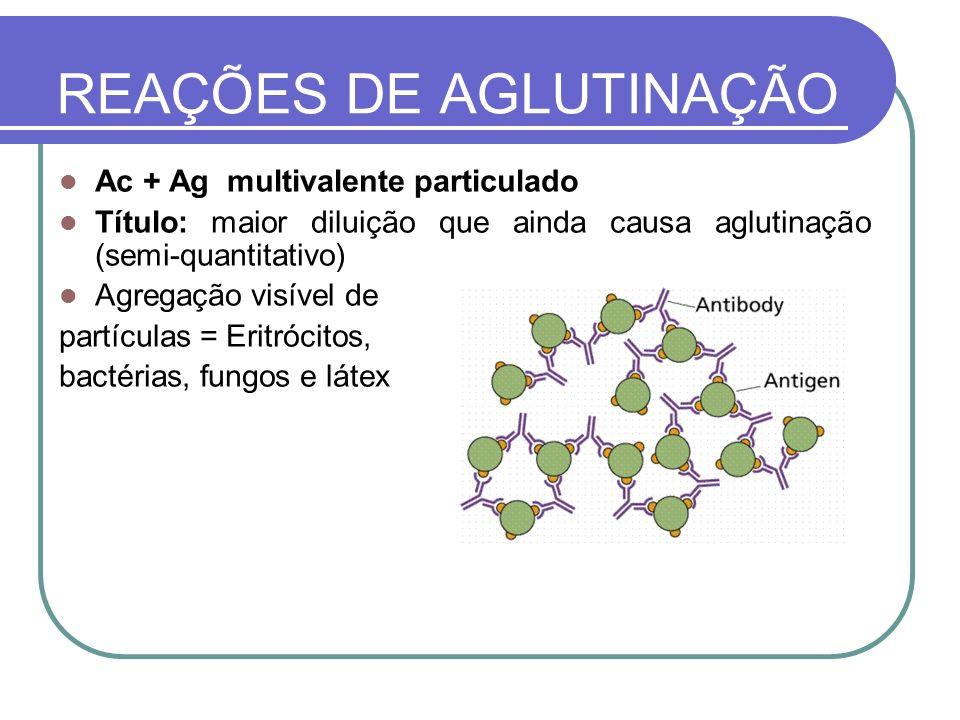 Ac + Ag multivalente particulado Título: maior diluição que ainda causa aglutinação (semi-quantitativo) Agregação visível de partículas = Eritrócitos,