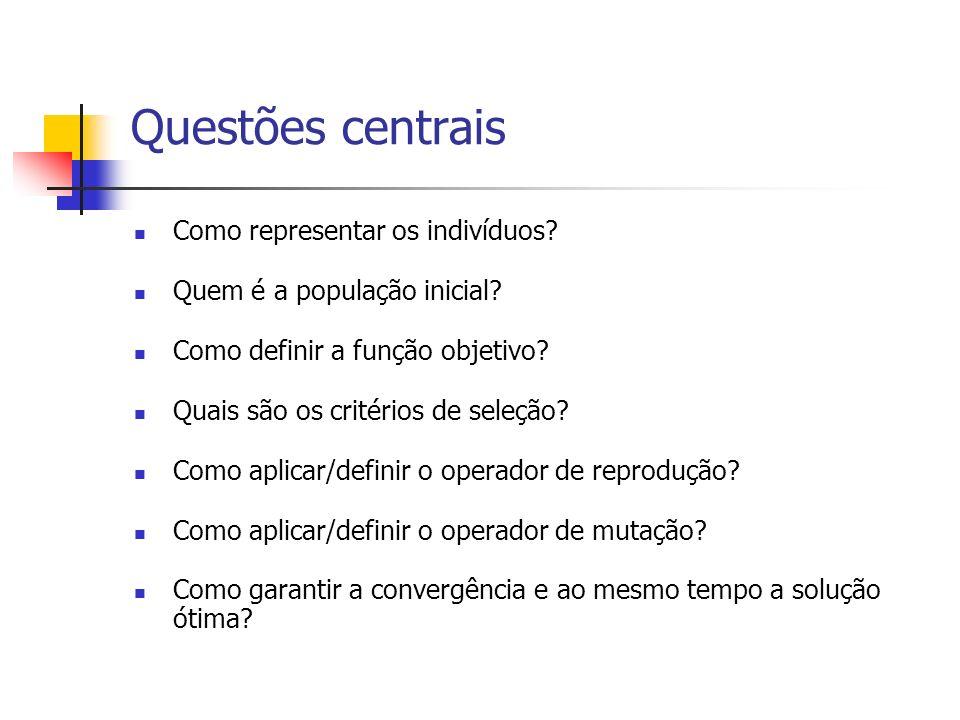 Questões centrais Como representar os indivíduos? Quem é a população inicial? Como definir a função objetivo? Quais são os critérios de seleção? Como