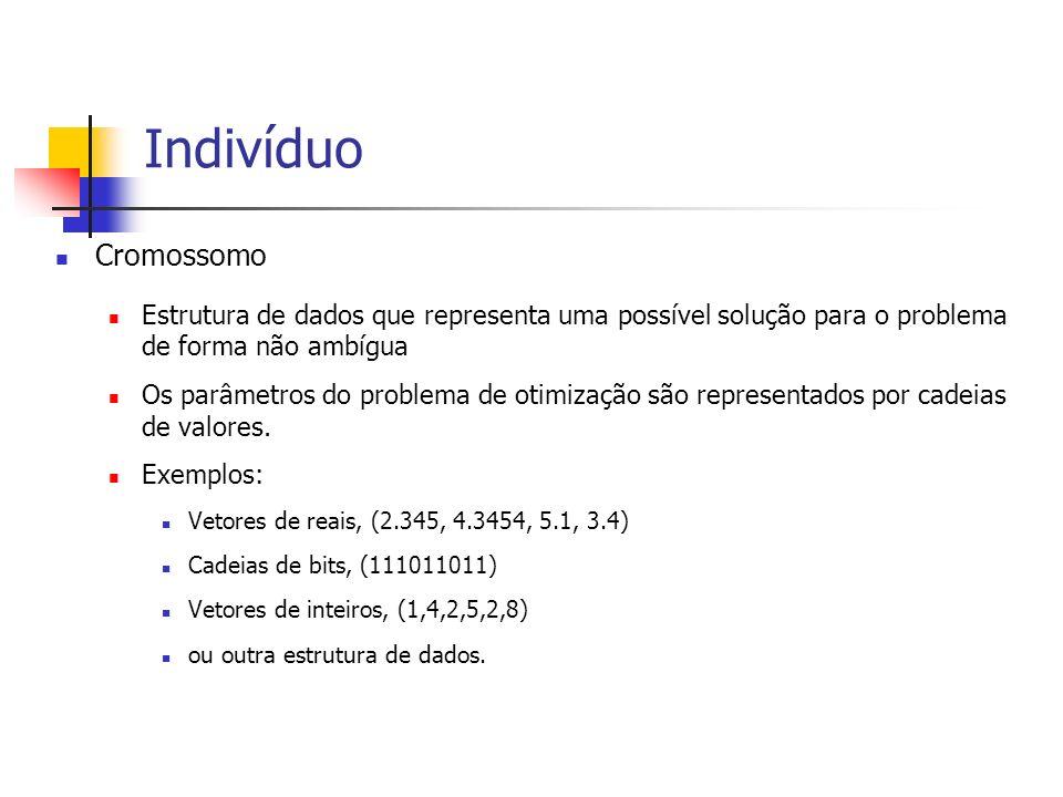 Indivíduo Cromossomo Estrutura de dados que representa uma possível solução para o problema de forma não ambígua Os parâmetros do problema de otimizaç