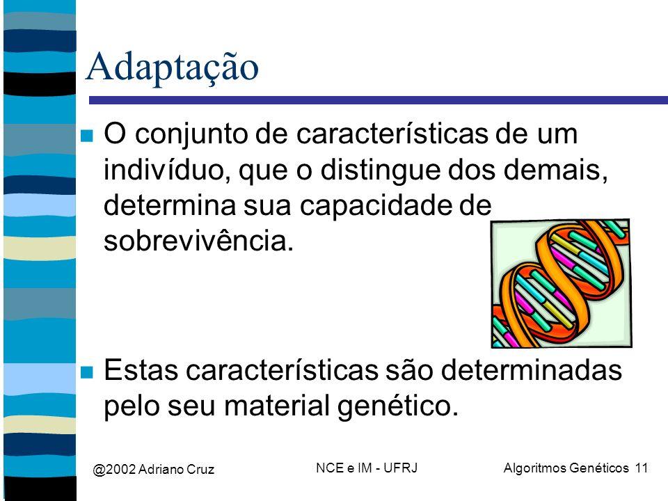 @2002 Adriano Cruz NCE e IM - UFRJAlgoritmos Genéticos 11 Adaptação O conjunto de características de um indivíduo, que o distingue dos demais, determina sua capacidade de sobrevivência.
