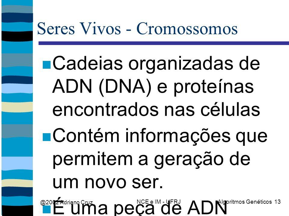 @2002 Adriano Cruz NCE e IM - UFRJAlgoritmos Genéticos 13 Seres Vivos - Cromossomos Cadeias organizadas de ADN (DNA) e proteínas encontrados nas células Contém informações que permitem a geração de um novo ser.