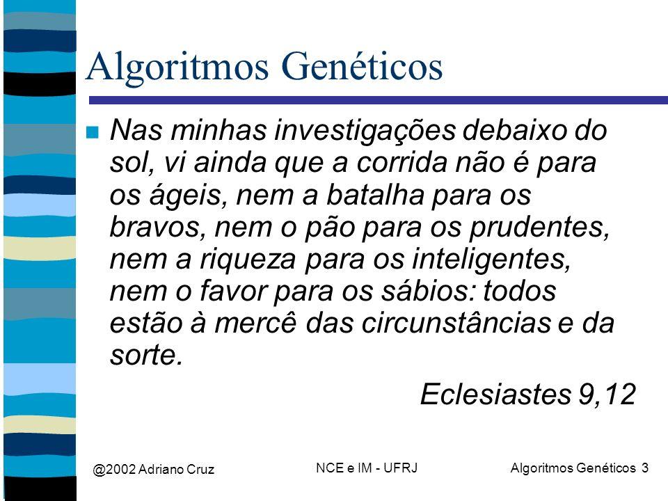 @2002 Adriano Cruz NCE e IM - UFRJAlgoritmos Genéticos 3 Algoritmos Genéticos Nas minhas investigações debaixo do sol, vi ainda que a corrida não é pa