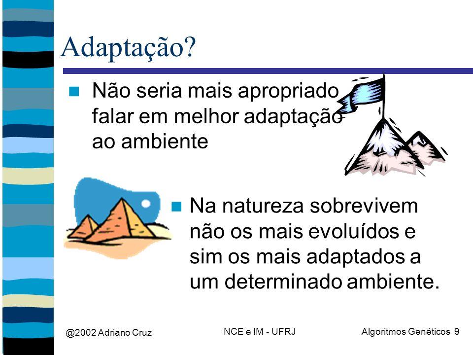 @2002 Adriano Cruz NCE e IM - UFRJAlgoritmos Genéticos 9 Adaptação? Não seria mais apropriado falar em melhor adaptação ao ambiente Na natureza sobrev