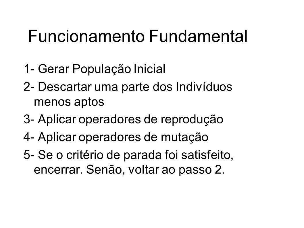 Funcionamento Fundamental 1- Gerar População Inicial 2- Descartar uma parte dos Indivíduos menos aptos 3- Aplicar operadores de reprodução 4- Aplicar operadores de mutação 5- Se o critério de parada foi satisfeito, encerrar.