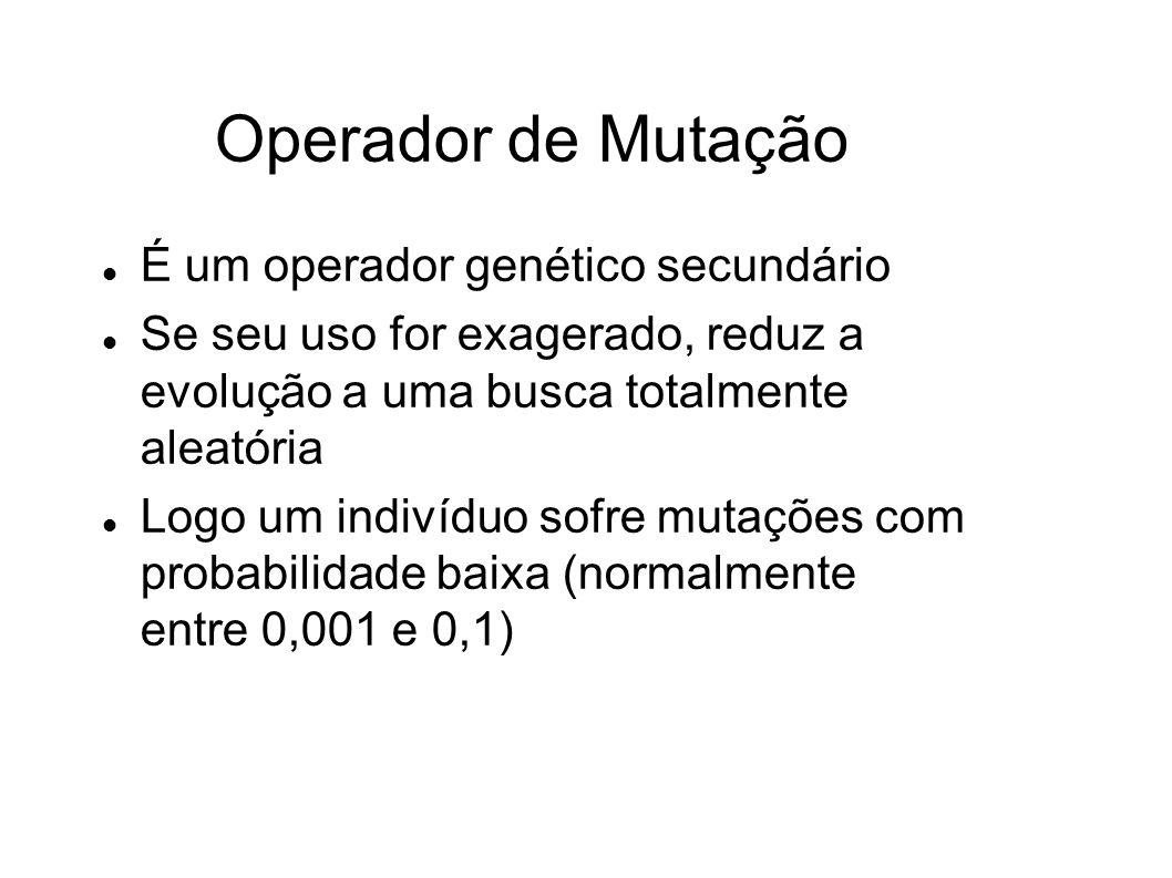 Operador de Mutação É um operador genético secundário Se seu uso for exagerado, reduz a evolução a uma busca totalmente aleatória Logo um indivíduo sofre mutações com probabilidade baixa (normalmente entre 0,001 e 0,1)