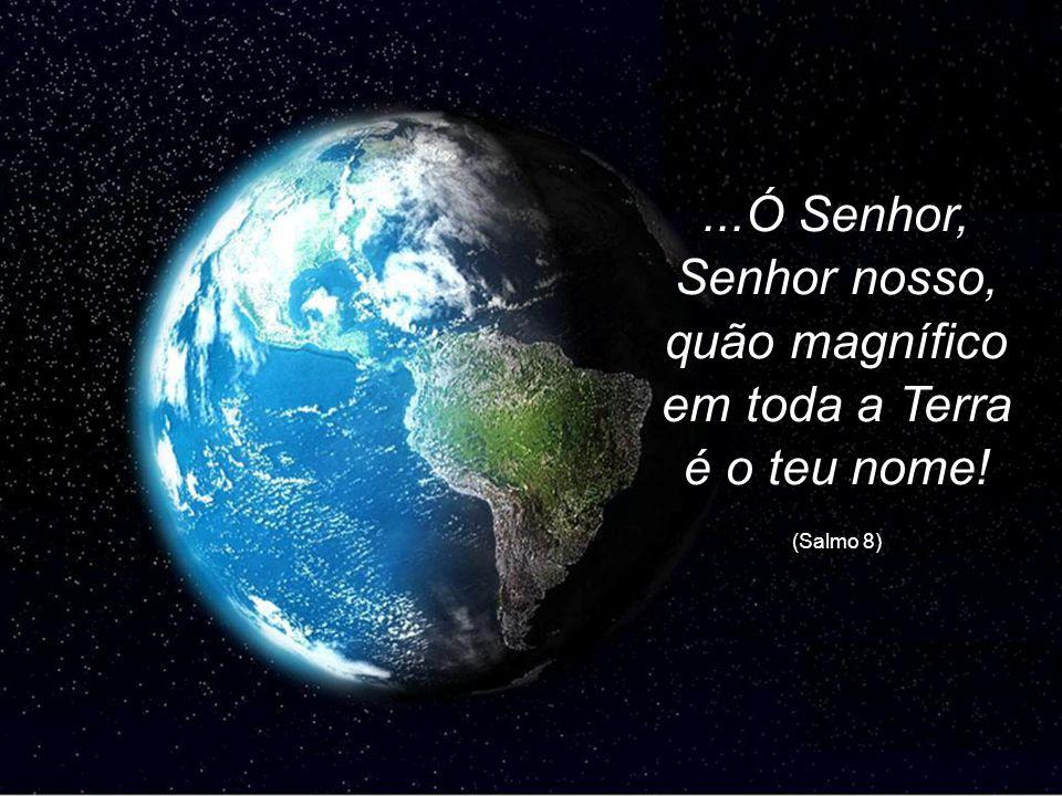 ...Ó Senhor, Senhor nosso, quão magnífico em toda a Terra é o teu nome! (Salmo 8)