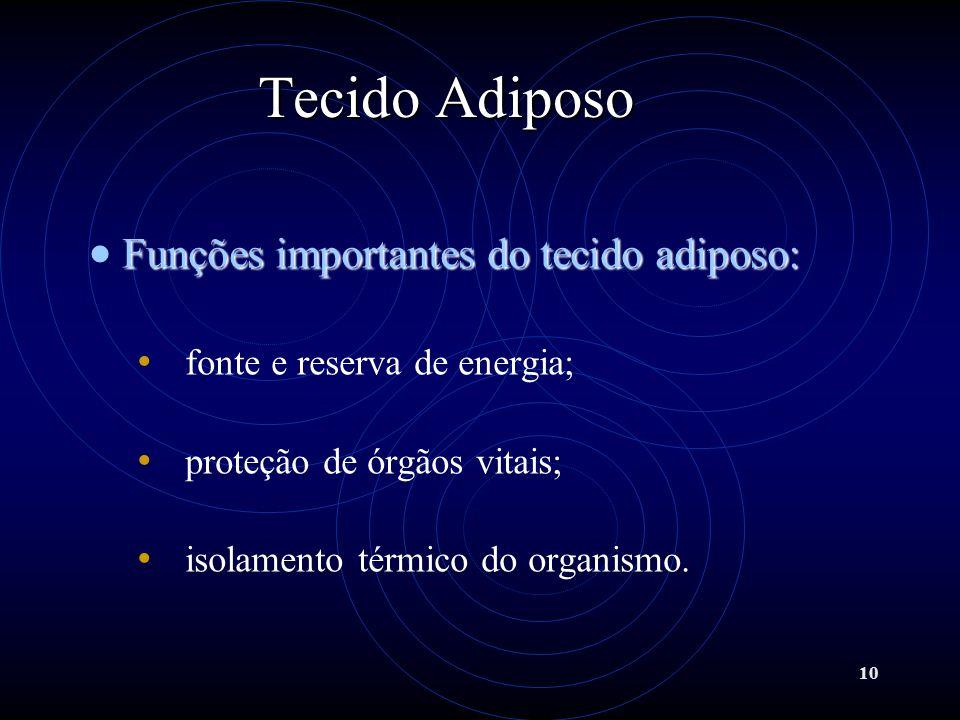 10 Tecido Adiposo Funções importantes do tecido adiposo: fonte e reserva de energia; proteção de órgãos vitais; isolamento térmico do organismo.