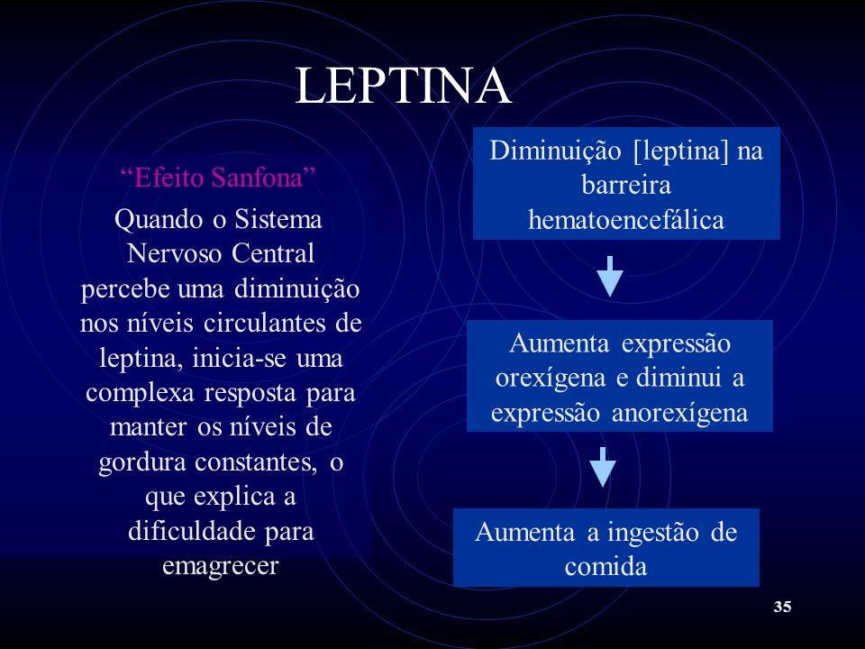 35 Efeito Sanfona Quando o Sistema Nervoso Central percebe uma diminuição nos níveis circulantes de leptina, inicia-se uma complexa resposta para mant