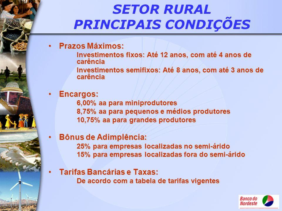 SETOR RURAL PRINCIPAIS CONDIÇÕES Prazos Máximos:Prazos Máximos: Investimentos fixos: Até 12 anos, com até 4 anos de carência Investimentos semifixos: