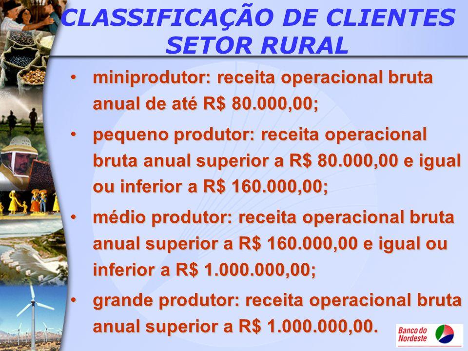 miniprodutor: receita operacional bruta anual de até R$ 80.000,00;miniprodutor: receita operacional bruta anual de até R$ 80.000,00; pequeno produtor: