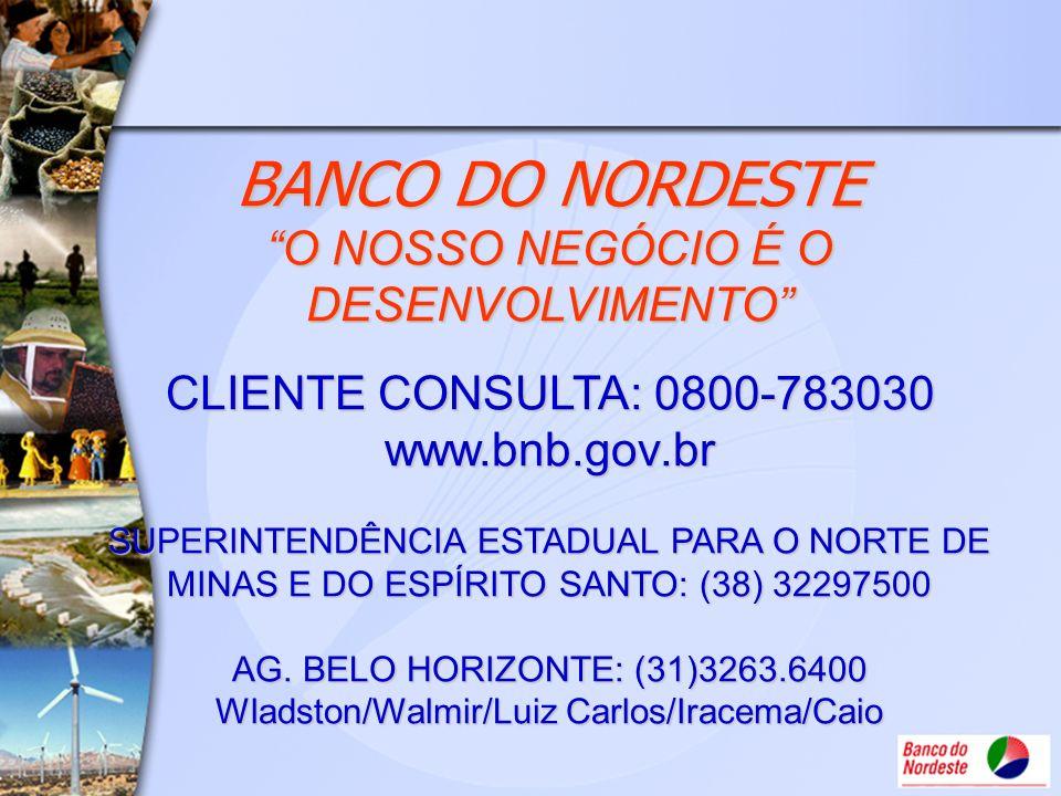 BANCO DO NORDESTE O NOSSO NEGÓCIO É O DESENVOLVIMENTO CLIENTE CONSULTA: 0800-783030 www.bnb.gov.br SUPERINTENDÊNCIA ESTADUAL PARA O NORTE DE MINAS E D