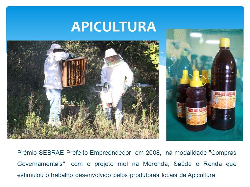 APICULTURA Prêmio SEBRAE Prefeito Empreendedor em 2008, na modalidade